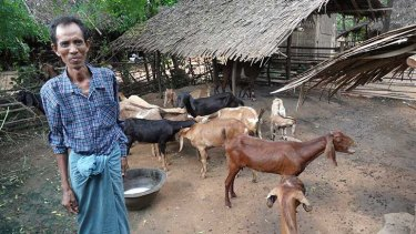 Improving goat and sheep production through better animal health services will help boost the income and livelihoods of Myanmar's rural poor.  Photo: Angus Campbell.