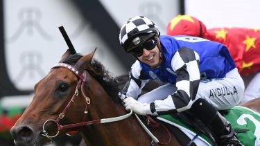 Big Duke ridden by Brenton Avdulla wins the Heineken 3 St Leger Stakes race.