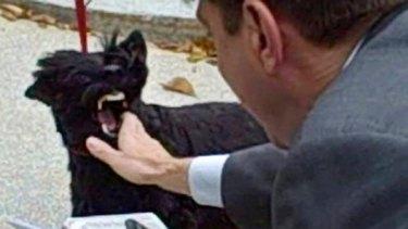 Still image from a video shows Barney biting reporter Jon Decker.