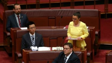 Palmer United Party senator Jacqui Lambie used her maiden speech to reiterate her calls for a royal commission into the Australian Defence Force and the Department of Veterans Affairs.