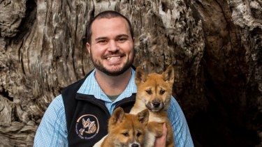 Smith with dingo pups.
