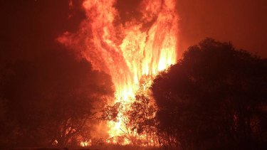 A bushfire burns on North Stradbroke Island.