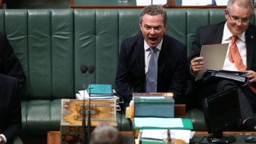 Leader of the House Christopher Pyne during question time on Thursday.
