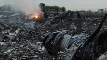 The wreckage of the Malaysia Airlines plane.