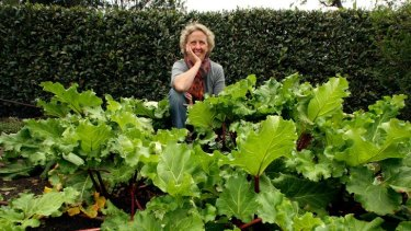 Author Penny Woodward says rhubarb and bay leaves, pictured here in the kitchen garden behind the Observatory cafe in Melbourne's Royal Botanic Gardens, are great insect repellents.