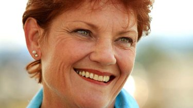 Pauline Hanson has announced she'll run for a NSW Senate seat for the One Nation party.