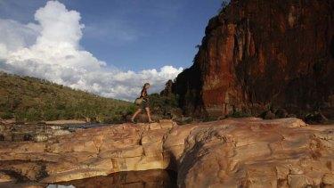 Running wild … Sarah Legge in the Artesian Range sanctuary, also above.