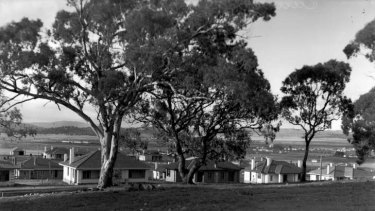 New housing in Canberra, 1926.
