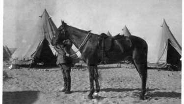 War horse: Major General Sir William Throsby Bridges holding the bridle of his favourite charger, Sandy.