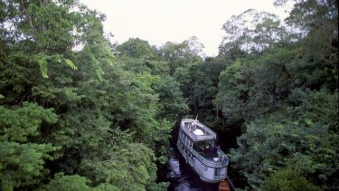 Amazon not the carbon sink many had thought.