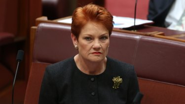 Students with disabilities are putting a strain on teachers and schools, Pauline Hanson has told Parliament.