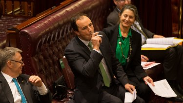 Greens MP Jeremy Buckingham, who used an e-cigarette in the NSW upper house, says Parliament should have gone further with new restrictions.