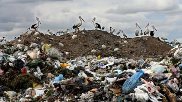 Transpacific took in $269million in charges from its landfill assets.