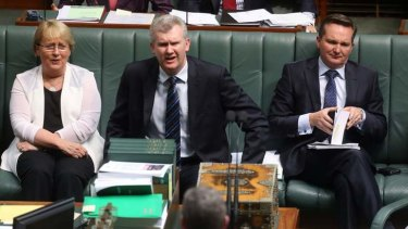 Labor frontbenchers Jenny Macklin, Tony Burke and Chris Bowen during question time in Parliament.