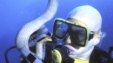 Professor Bryan Fry with an olive sea snake on the Great Barrier Reef.