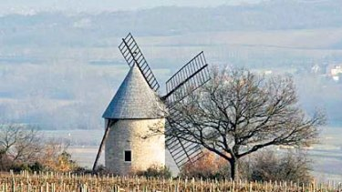 Change in scenery...Ray Walker moved to Burgundy to rival domaines like Romanee-Conti and Corton-Andre.