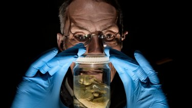 Melbourne Museum will open a biobank next year to store reproductive material. Dr Mark Norman is pictured with a Tasmanian Tiger embryo.