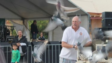 Ian says he is still mystified as to what happened to many of  the pigeons released in Leonora who went missing en-route to Geraldton.