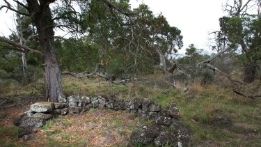 An original stonehouse site at Kurtonitj north of Tyrendarra.