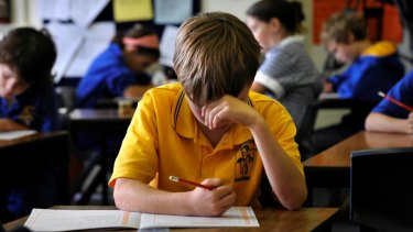 NAPLAN Test results have remained virtually unchanged.