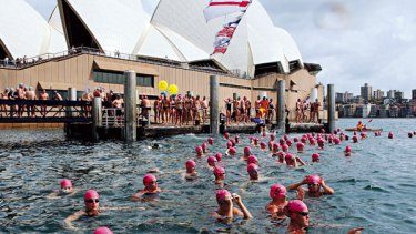 A touch of danger...competitors get ready for the Sydney Harbour Swim Classic at the Man O'War steps yesterday.