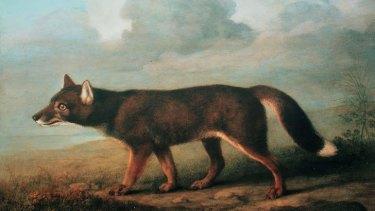 Dingo: <em>George Stubbs.</em>