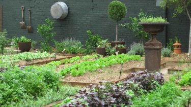 Meals or wheels? Chiswick's kitchen garden is thriving.