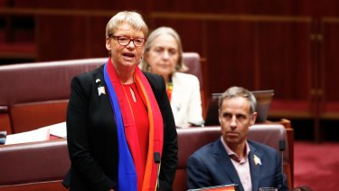 Senator Janet Rice during Question Time in the Senate at Parliament House in Canberra on Wednesday 15 November 2017. fedpol Photo: Alex Ellinghausen