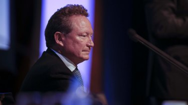 """I didn't count it on the way up and I'm not counting it now,"": Andrew Forrest."