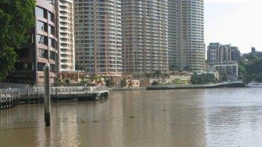 Weeks of rain have filled the Brisbane River with debris.