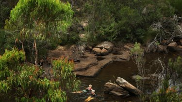 Among the state's cleanest creeks … Sharyn Cullis and Pat Durman swim in O'Hares Creek in the Dharawal State Conservation Area.