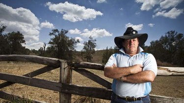 Tended the horses ... David Barry at the property in Kooralbyn where several horses died last week.