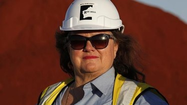 Gina Rinehart's Roy Hill mine has been served two prohibition notices in response to a number of serious incidents reported in the past year involving cranes and elevated working platforms.