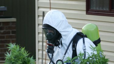 Drug squad police remove plants from a crop house.