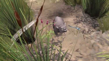 <i>Paperbark</i> tells the story of a sleepy wombat's journey through the Australian bush.