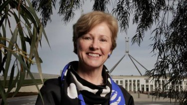 Poll setback: Christine Milne has rejected the idea she is the wrong person to lead the Greens.