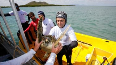 Researchers tagging turtles along the Great Barrier Reef.