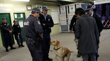 Police sniffer dogs at work at St Peters station.