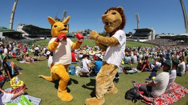 Heat? What heat? High temperatures failed to stop a boxing kangaroo mascot shaping up to provide the knockout blow to the English lion mascot on the hill at the WACA Ground on Sunday.