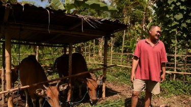 Made Sigi at his home in Menanga village after returning to the red zone to feed his cows as BRIMOB paramilitary officers on patrol warn people in Menanga village from entering the 9km danger zone as Mount Agung threatens to erupt, in the Rendeng area, Bali, Indonesia.