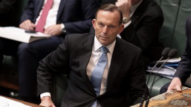 Made man: Many of the Abbott characteristics are not innate weaknesses, but learned ones.