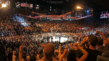 """The UFC octagonal competition mat and fenced-in design known as 'the octagon""""."""