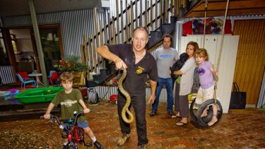 Gotcha! ''Snake Man'' Raymond Hoser comes to grips with a feisty adult male tiger snake while the concerned Cussen family, of Clifton Hill, looks on apprehensively.