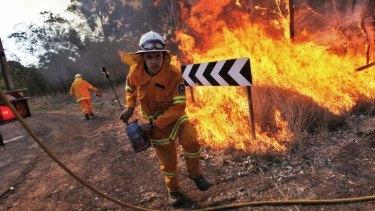 RFS volunteers at a hazard-reduction burn in Scheyville National Park in Sydney's north west.
