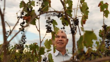 Grape expectations … Craig Cromelin, one of the 16 men who co-founded Murrin Bridge Connection wines. ''I still think it's got every chance of success.''