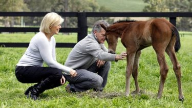 Proud godparents: Black Caviar's managing part-owner Neil Werrett and partner Lena Attebo with her new foal.