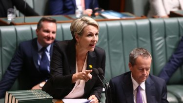 Deputy Opposition Leader Tanya Plibersek during question time  on Wednesday.