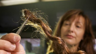Forensic Scientist Voula Staikos holding a hair sample.