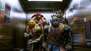 Teenage Mutant Ninj Turtles ready for action.