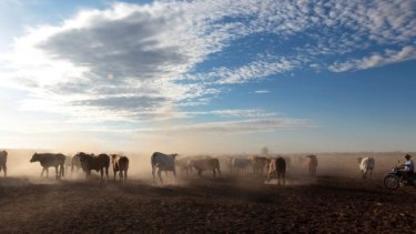 The sale of S.Kidman's portfolio, which includes the largest cattle property in the world, was blocked in November.